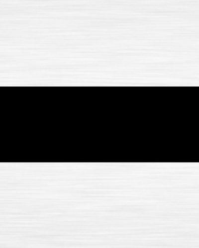Metalex 0001 Light Silver Black